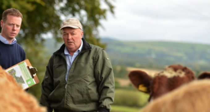National 'Sustainable Dairy Assurance Scheme Launched in Ireland