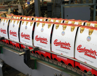 Budvar Claims Trademark Victory in Portugal