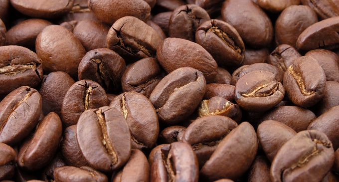 New Green Coffee Carbon Footprint Product Category Rule (CFP-PCR) Launched