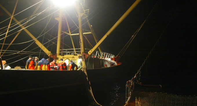 Green Light For New Sustainable EU Fisheries Policy From 2014