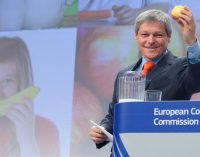 EC Proposes to Combine and Reinforce Existing School Milk and School Fruit Schemes