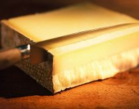 Emmi Acquires Stake in Mexican Cheese Business