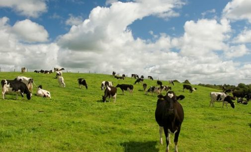 Impact of Teagasc Research Highlighted