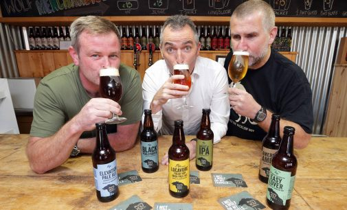 Boost for Wicklow Wolf brewers with €2 million investment