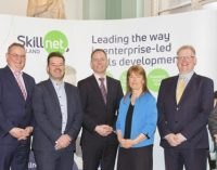 What are the Pillars of SME Success? Diversity, Leadership, Strategy and The Team