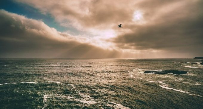SEAI Leads €2.6 Million European Project to Unlock Potential of Ocean Energy